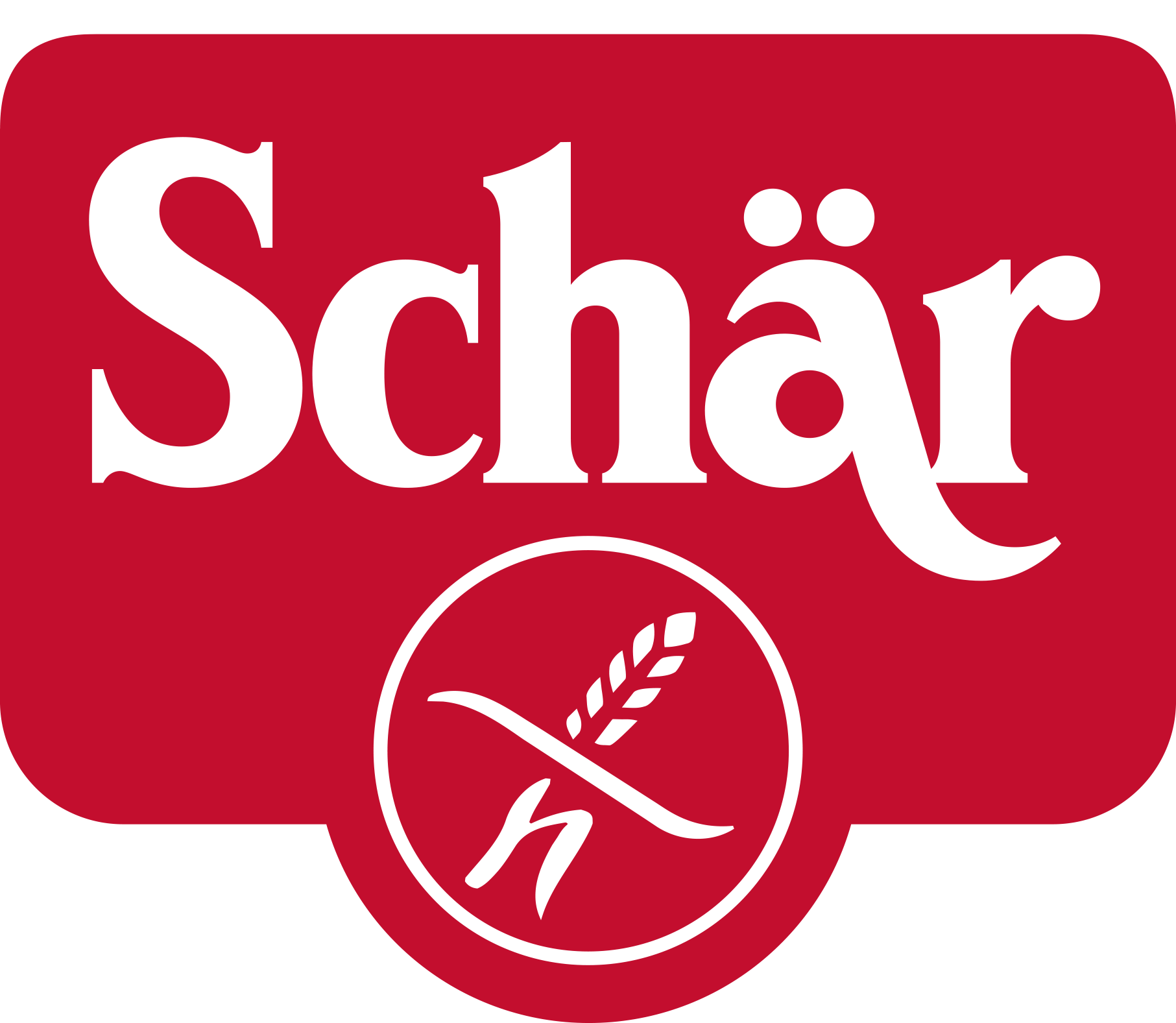 Dr Schar